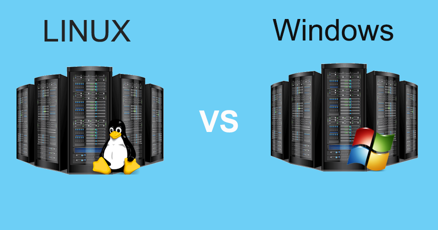 A Detailed Analysis of the Difference between Linux and Windows Web Hosting